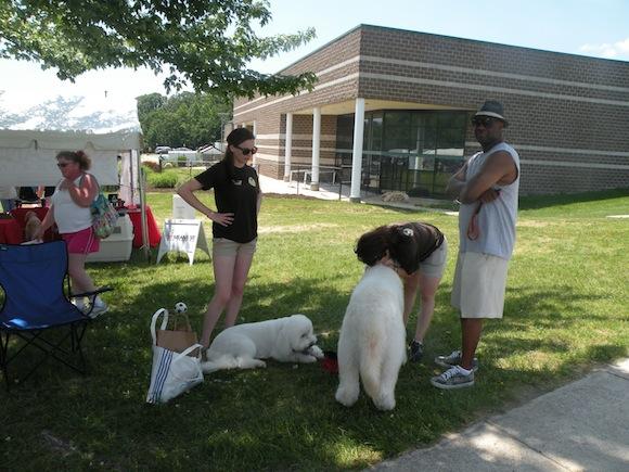 Olde Towne Pet Resort saying goodbye