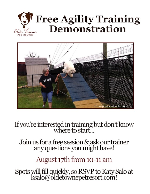 LEO'S TRAINING FLYER