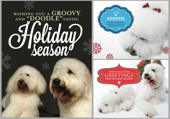 GOLDENDOODLE HOLIDAY NOTE CARDS