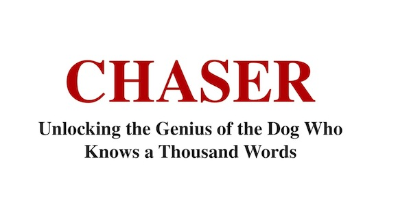 CHASER WORDS
