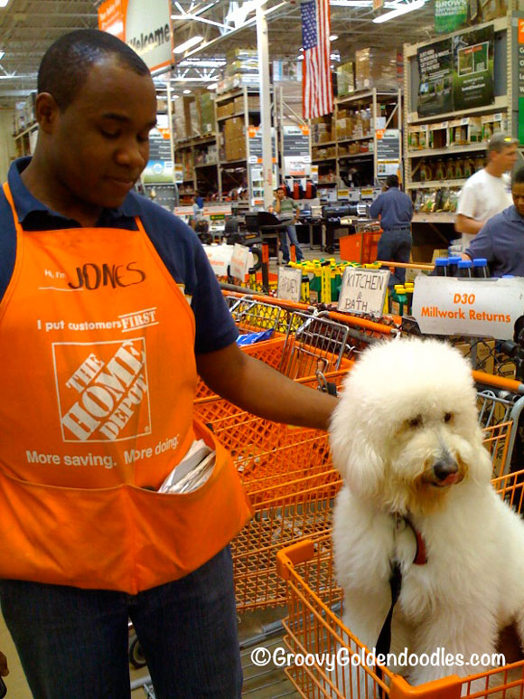 Because Harley's so welcome, we're loyal customers at Home Depot