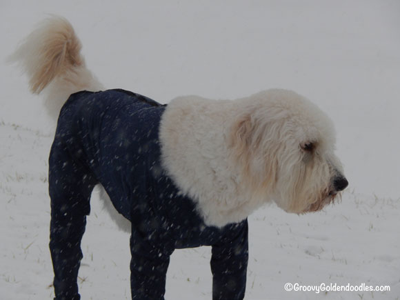 These snow suits will need serious repair after this winter...