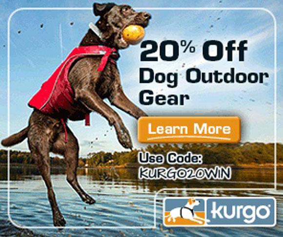 dog-kurgo