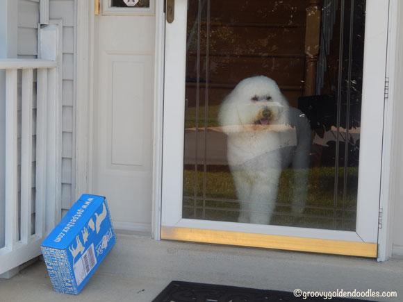 """Thanks Mr. UPS man, come back again soon..."""