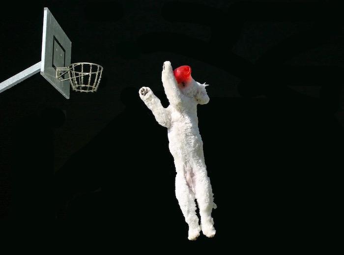 J (Jumping)
