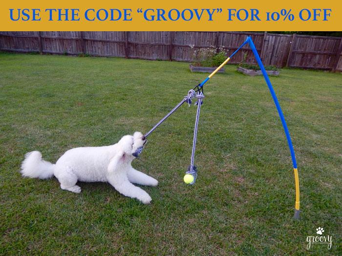 Dog Guilt Games