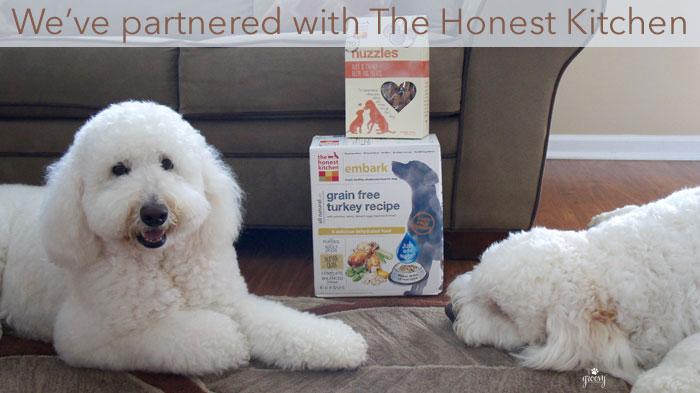 HUMAN GRADE PET FOOD - THE HONEST KITCHEN