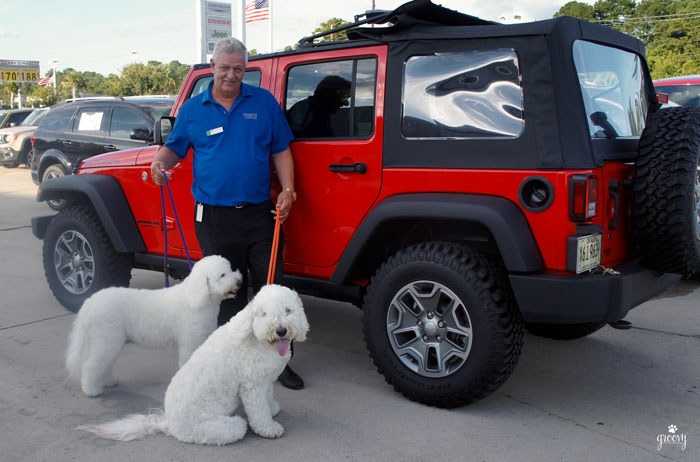 WRANGLER JEEP - FUN FOR PETS TOO!