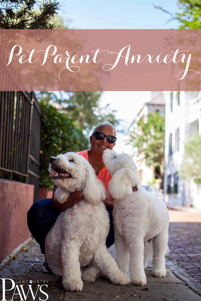 Thursday Doodle Blogging >> PET PARENT ANXIETY - Groovy Goldendoodles™
