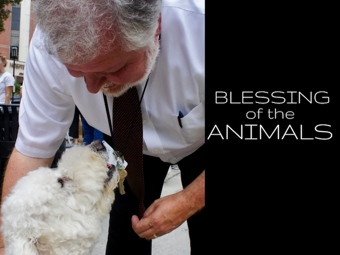 ST. FRANCIS OF ASSISI - BLESSING OF THE ANIMALS