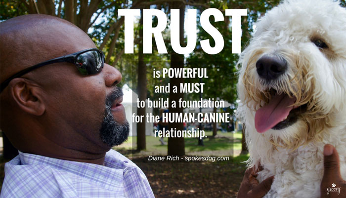 A DOGS TRUST