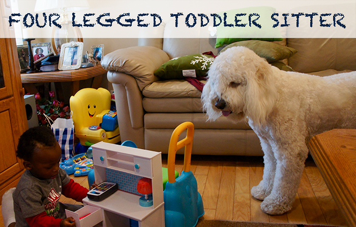 FOUR LEGGED TODDLER SITTER