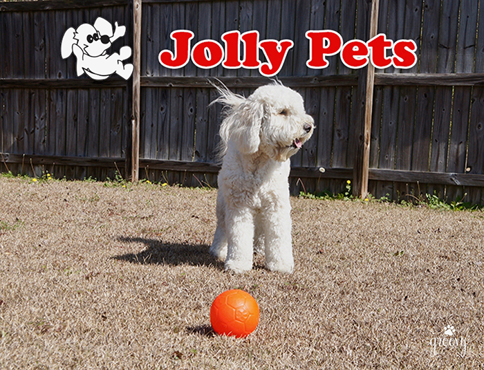 JOLLY SOCCER BALL MEANS JOLLY FUN