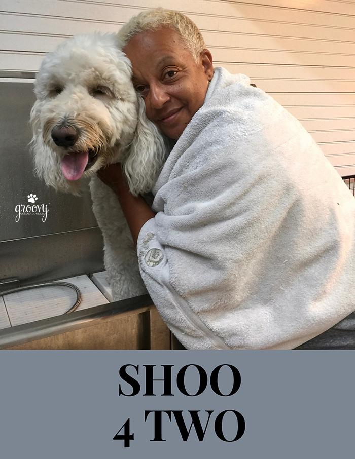 SHOO 4 TWO