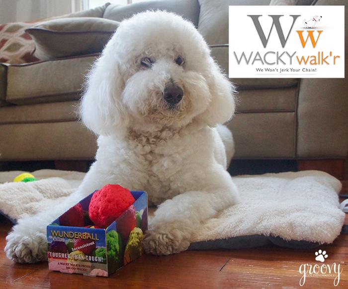 WACKY WALK'R #BESTFETCHTOY