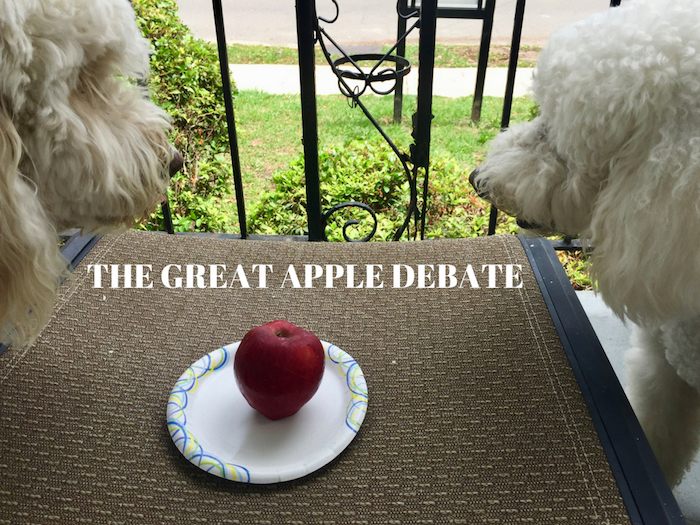 THE GREAT APPLE DEBATE