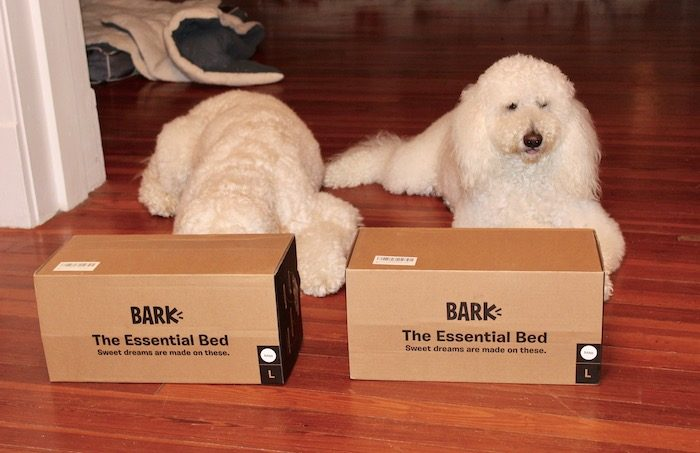 THE ESSENTIAL DOG BED #BARKBOX