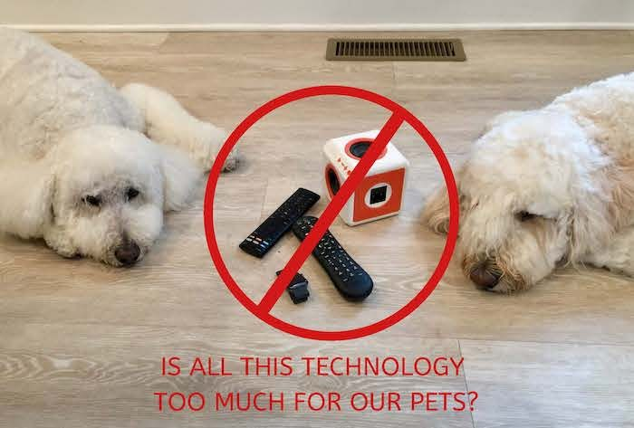 TECHNOLOGY AND OUR PETS